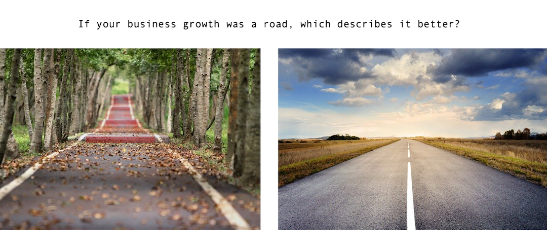 Speedbumps to Business Growth